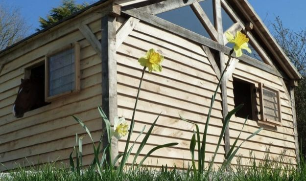Oak profiles and fixings of featheredge cladding
